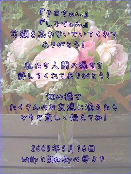080516_11.jpg