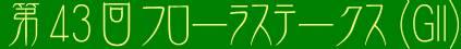 第43回サンケイスポーツ賞フローラステークス(GII)