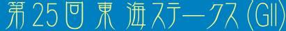 第25回東海ステークス(GII)