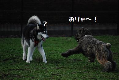 080323blog4.jpg
