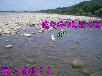CIMG0568 (1)
