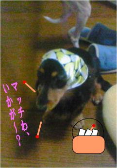 NEC_0011.jpg