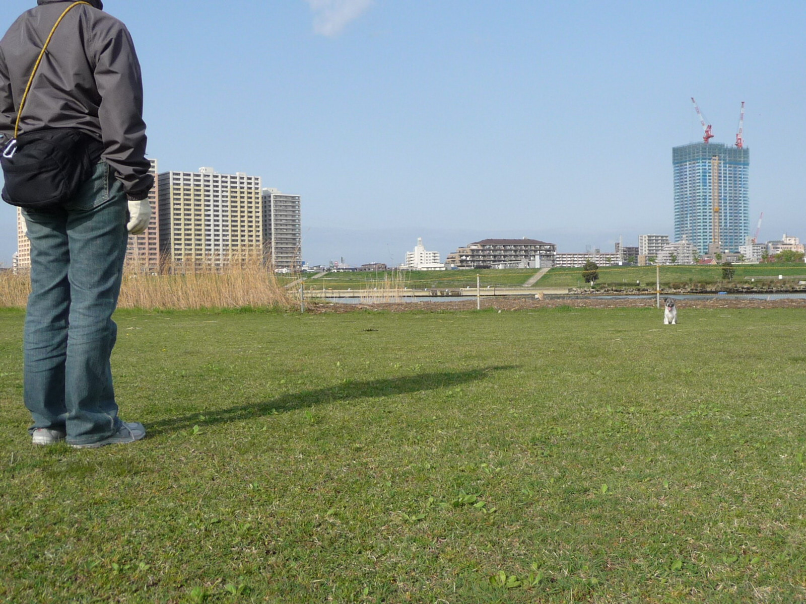 江戸川-停座および・・