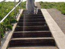階段を下りるところ