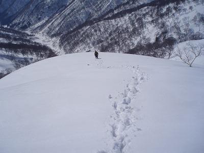 蓬峠からの下り