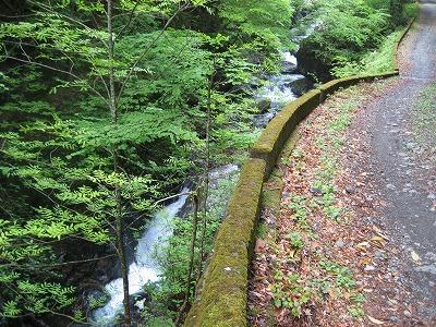 泉水谷も美しい