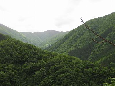 市ノ沢遠望(下山時)