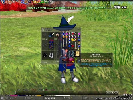 mabinogi_2008_06_16_003.jpg