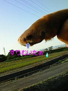 20080504NO1.jpg