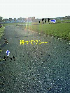 20080504No2.jpg