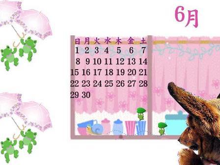 miyoちゃん加工カレンダー