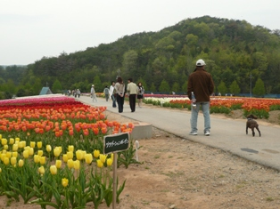 2008年5月 059