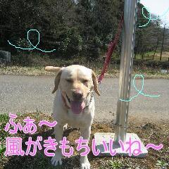 裕次郎10