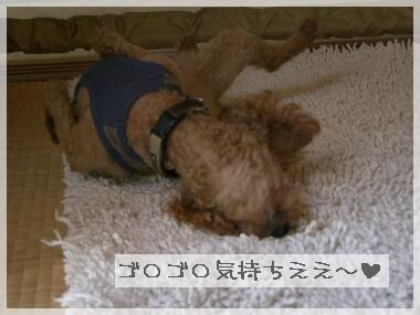 08yasumi2.jpg