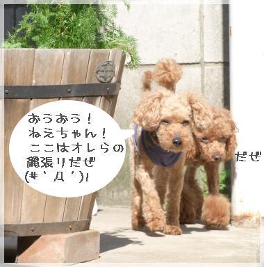 08yasumi3.jpg