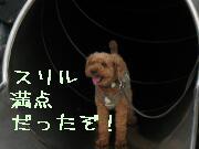 yakuouen14.jpg