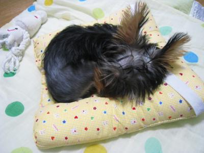 幼児用ざぶとんで作ったベッド