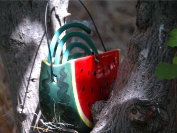 可愛いスイカの蚊取り線香容器