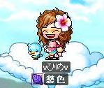 Maple1063.jpg