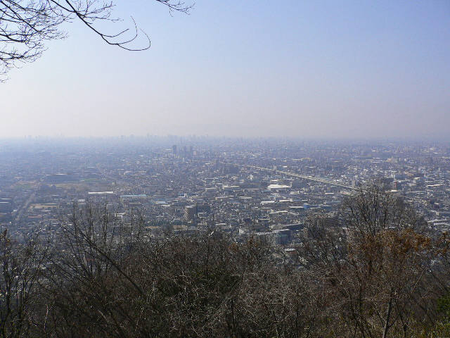 大阪が一望です!!