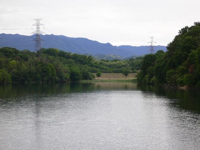 この辺は野池多いです。