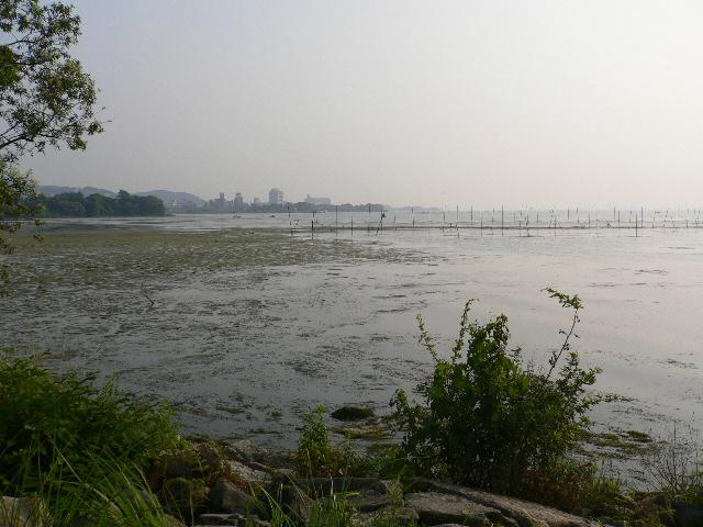 琵琶湖っす!