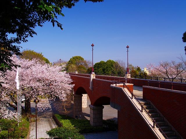 桜咲く霧笛橋