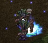 3_20080529223602.jpg