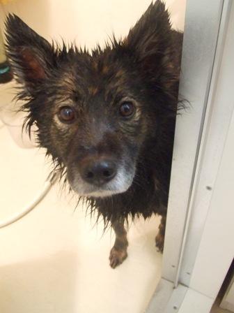 winnie bath1