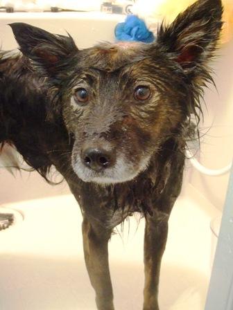 winnie bath2