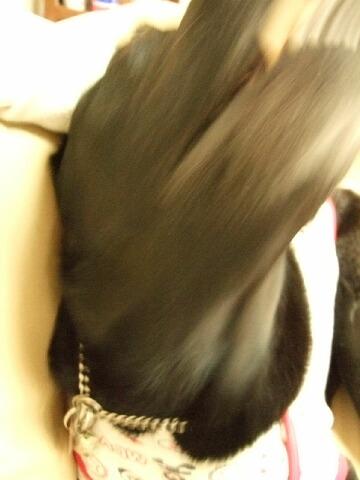 20080514-04.jpg