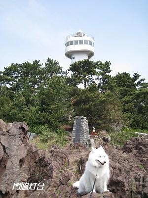 灯台はワンコNG