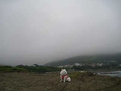 濃霧の中です。