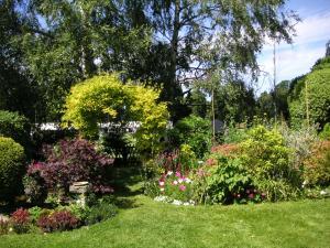 庭の奥、左の方。
