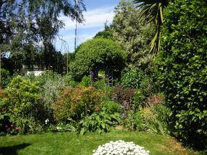 庭の奥、右の方はこんな。