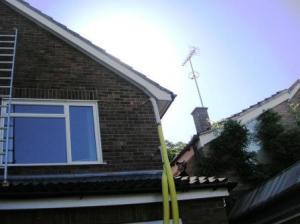 屋根に上って