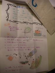 キムチレシピ1