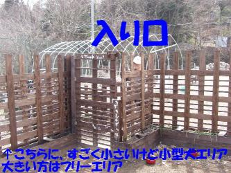 b2P3230039.jpg