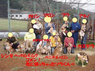 bP3230100-1.jpg