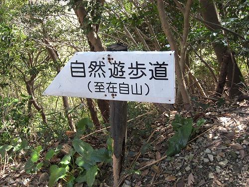 花見登山(宮地嶽) 030