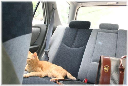 行きの車内で・・・