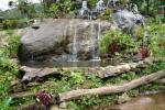 一枚岩と滝