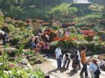 植物園1.