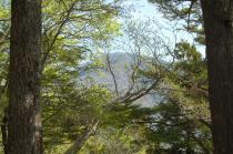 途中から見る日留賀岳