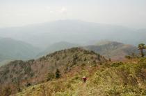 山頂付近から