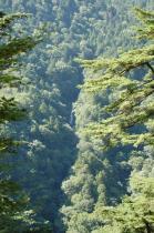 オロオソロシノ滝