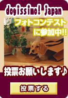 犬の総合情報サイ ト - Dogissimo ドギーシモ -