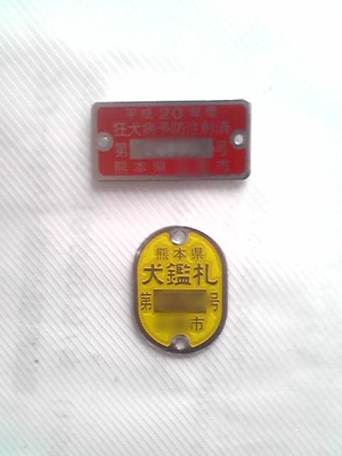 SH020003.jpg
