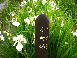 hanashoubu-shoubu080621-212