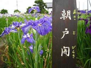 hanashoubu-shoubu080621-219